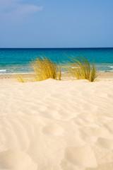 Dune di Porto Pino, Teulada, Sardegna