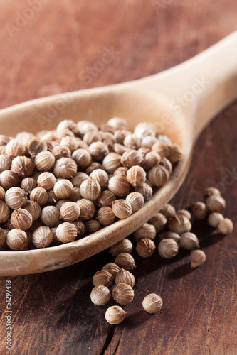Dry coriander seeds on a spoon