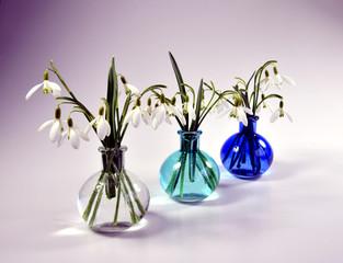 Schneeglöckchen in der Vase