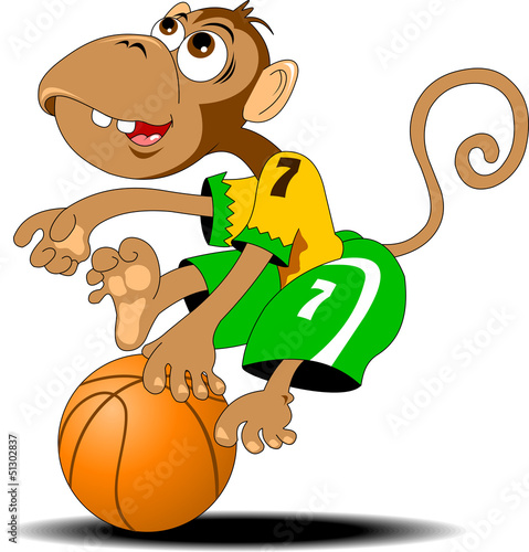 monkey and basketball