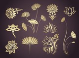 Fototapety water lily, paisley  floral motifs , wedding, royal India