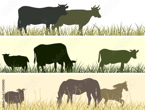 Horizontal illustration of farm pets.