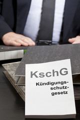 Kschg1