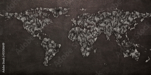 Leather Texture of World map