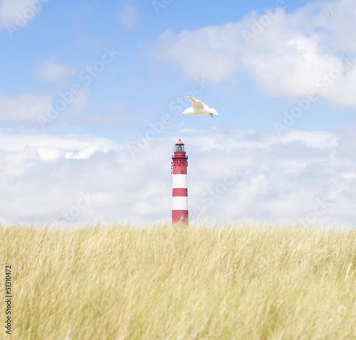 Fototapeten,leuchtturm,amsel,sanddünen,strand