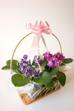Basket of flowers - gift