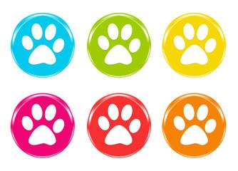 Iconos de colores con huellas de mascota