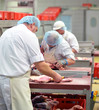 Metzger im Schlachthof // butcher in slaugtherhouse