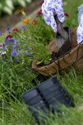 gardener pours soil into hanging basket