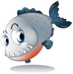 A big gray piranha