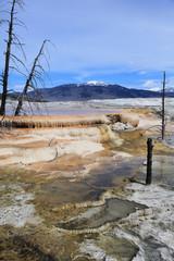Yellowstone national Park 5