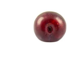 Damson plum or prune on white background