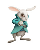 white rabbit with clock