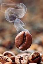 Bean Coffee palenia