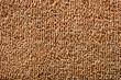 Brown Carpet (Texture)