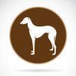 Vector image of an dog (azawakh) , illustration - vector