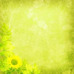 fresh nature background texture