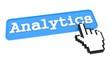Analytics Button.