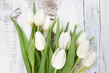Bouquet of white tulips over white wooden table
