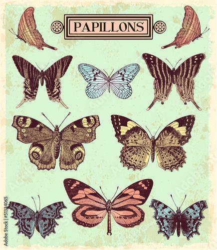 Foto op Canvas Vlinders in Grunge Les papillons