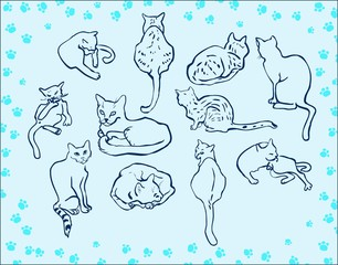 Cartoon cat set illustration