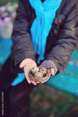 hands of a little boy in golubol scarf holding a nest with quail