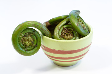 Fiddleheads in Bbowl