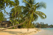 Tropical beach with exotic palm trees, Thailand.
