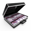 Briefcase with Euro banknotes side view