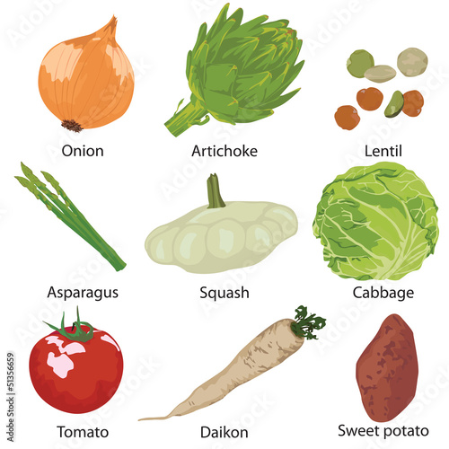 set vegetables isolated