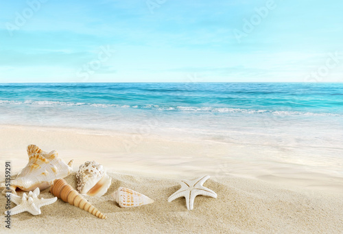 Canvas Zee / Oceaan Landscape with shells on tropical beach