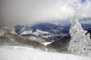 Paysage enneigé dans les Hautes-Vosges