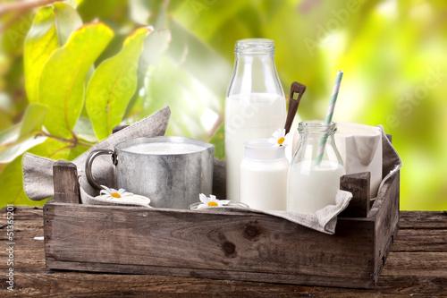 frische Milchprodukte im Garten