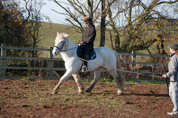Riding lesson on the lunge