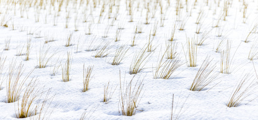 von Schnee umgeben