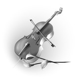 Classical cello on white background
