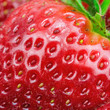 Macro view of strawberry