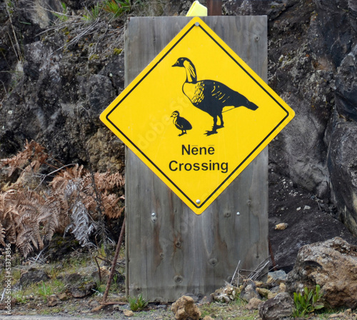Nene Crossing sign seen in Hawaii