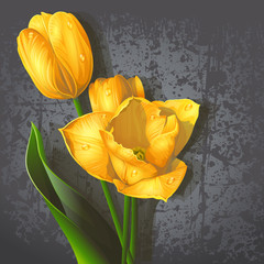 Background for your text with yellow tulips