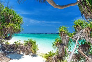 einsamer exotischer Strand