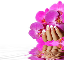 French Nails - rosa