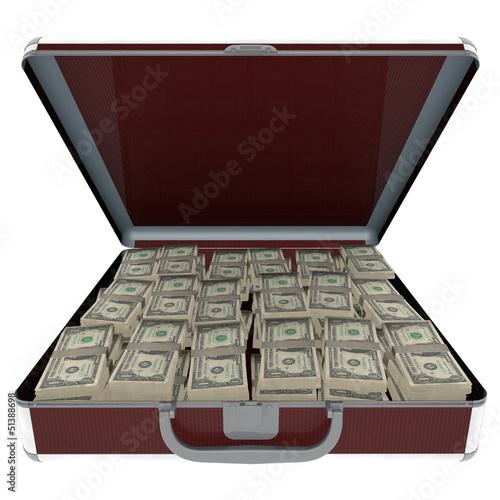 Maletin con dinero
