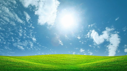 Field of green and sunny sky footage