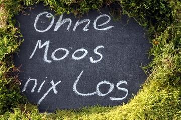 """""""Ohne Moos nicht los"""" auf Tafel mit Moos drumrum"""
