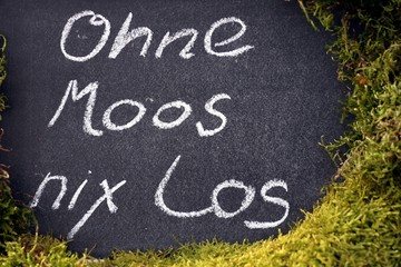 "Spruch ""Ohne Moos"" nichts los auf Tafel mit Moos"