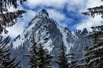 McClellan Butte Snow Mountain Peak Through Trees Snoqualme Pass