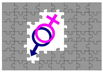 Puzzle cinsiyet işaretleri