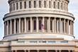 US Capitol Houses of Congress Washington DC