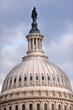 US Capitol Dome Freedom Statue Washington DC