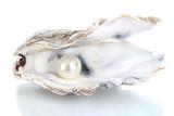Otwarta ostryga z perłą odizolowywającą na bielu
